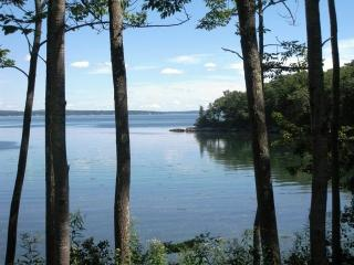 Lily Cove - Bar Harbor and Mount Desert Island vacation rentals