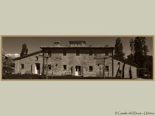 Il Casale del Duca - Urbino vacation rentals