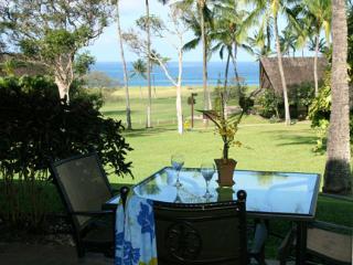 Romantic Studio - Maunaloa vacation rentals