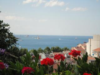 Sea View Garden Terrace - Istanbul vacation rentals