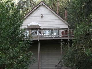 Dog friendly chalet near the lake- foosball, loft/NO HOT TUB - Groveland vacation rentals