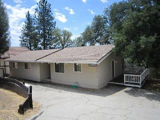 03/96 Knotty Pine Delight with View - Groveland vacation rentals