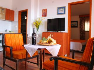 NR LUX-Comfort Two-Bedroom Apartment with Sea View - Becici vacation rentals