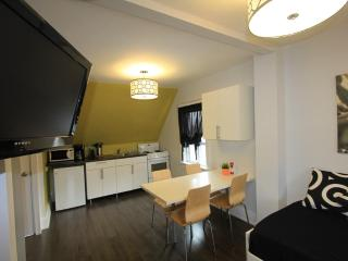 The Great Gerrard - Mona Lisa Suite - Toronto vacation rentals