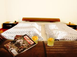 City Garden Apartment - Feels like home - Budapest & Central Danube Region vacation rentals