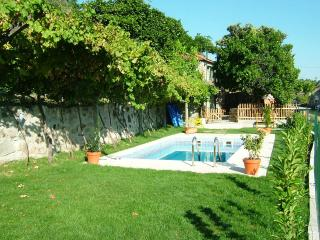 Charming 3bd country house,great view Douro valley - Amarante vacation rentals