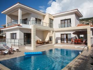 Koumasia Dream Exclusive Villa - Paphos vacation rentals