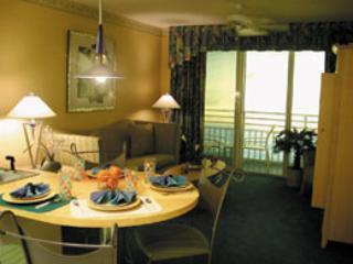Stay at Wyndham - Image 1 - Daytona Beach - rentals