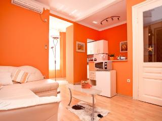 Apartment in Pula Center just next to amphitheatre - Istria vacation rentals