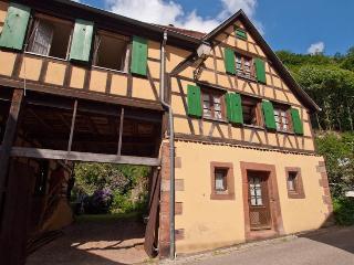 Ferienhaus Elsass - Oberbronn vacation rentals