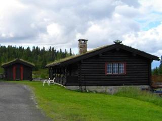 Raulandstua Cottage - Eastern Valleys vacation rentals