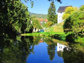 Maison Bellevue apartments, free wifi and parking, - Alsace vacation rentals