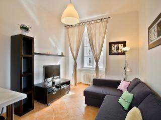 Happy Prague Apartment - Czech Republic vacation rentals