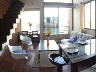 Loft in Bellas Artes-Best Location - Santiago vacation rentals