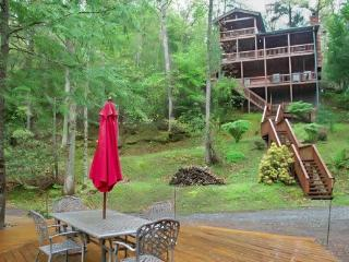 BEARS NEST- 3BR/3BA- CABIN SLEEPS 10, LOCATED ON THE TOCCOA RIVER, GAS & CHARCOAL GRILL, HOT TUB, FIRE PIT, DECK OVER THE RIVER, - Blue Ridge vacation rentals