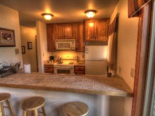 202 Shadow Run - Mountain Area - Steamboat Springs vacation rentals