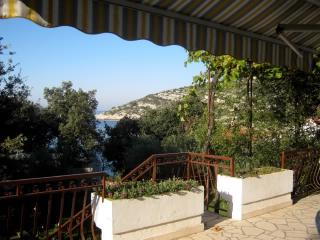 Apartments Gordana - 10051-A1 - Razanj vacation rentals