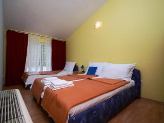 Apartments Slađana - 10911-A8 - Gradac vacation rentals