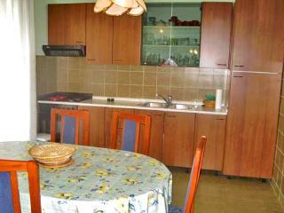 Apartments Zlata - 11481-A1 - Prvic vacation rentals