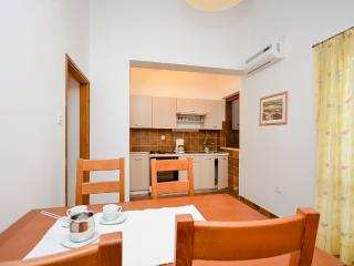 Apartments Igor - 13591-A2 - Sveti Filip i Jakov vacation rentals