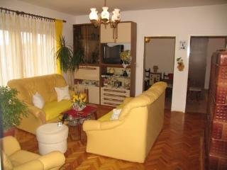 Apartments Ada - 13661-A2 - Preko vacation rentals