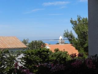 Apartments Ante - 13961-A4 - Mandre vacation rentals