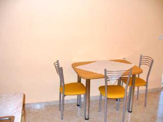 Apartment Danijela - 20121-A3 - Banj vacation rentals