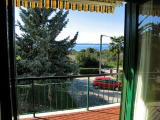 Apartments Davorka - 20251-A1 - Ugljan vacation rentals