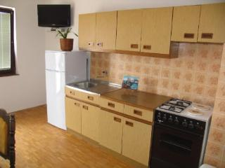 Apartments Ruža - 20821-A2 - Starigrad-Paklenica vacation rentals