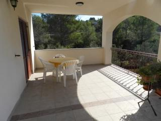 Apartments Davor - 21221-A2 - Prvic Luka vacation rentals