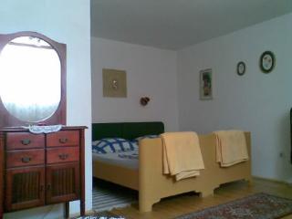 Apartments Estella - 21911-A1 - Banj vacation rentals