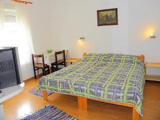 Apartments Senka - 22311-A1 - Brodarica vacation rentals