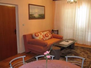 Apartment Anđelka - 23661-A1 - Jezera vacation rentals