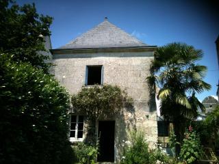 Villandry, au coeur des châteaux de la Loire, joli - Parcay-les-Pins vacation rentals