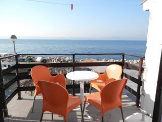 House Branimir - 31141-K1 - Drasnice vacation rentals