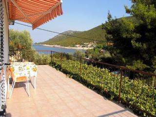 Apartments Nedeljko - 34121-A2 - Gdinj vacation rentals