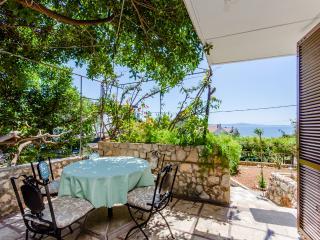 House Renato - 37681-K1 - Ivan Dolac vacation rentals