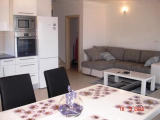 Apartments Goran - 39971-A2 - Island Ciovo vacation rentals