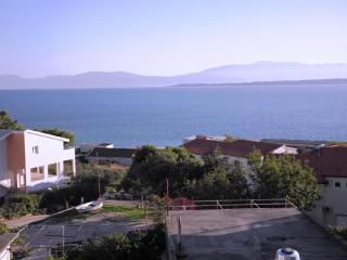 Apartments Joze - 41021-A1 - Zivogosce vacation rentals