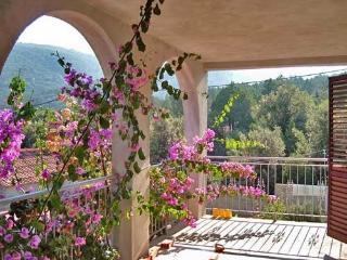 Apartments Tanja - 42411-A1 - Zastrazisce vacation rentals