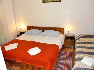 Apartment and Rooms Dragana - 50861-S3 - Cove Stiniva (Vela Luka) vacation rentals