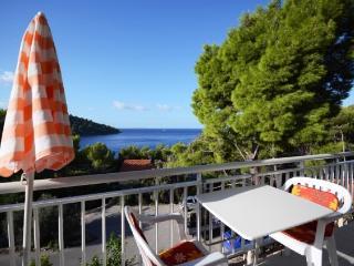 Apartments Marjan - 51371-A1 - Brna vacation rentals