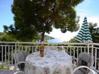 Apartments Marjan - 51371-A2 - Blato vacation rentals