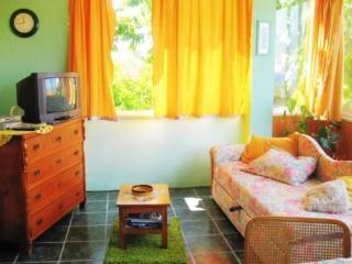Apartment Slavka - 51511-A1 - Kuciste vacation rentals