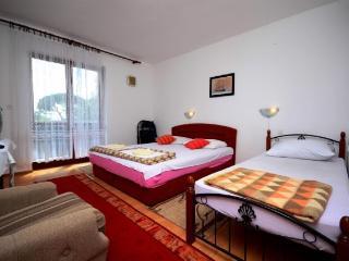 Apartments Smilja - 52921-A1 - Peljesac peninsula vacation rentals