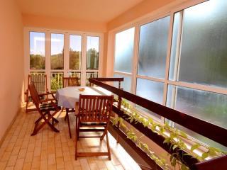 Apartment Ida - 53171-A1 - Southern Dalmatia Islands vacation rentals