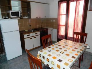 Apartments Barica - 60921-A1 - Fuzine vacation rentals