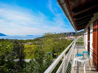 Apartments Nina - 61641-A2 - Barbat vacation rentals