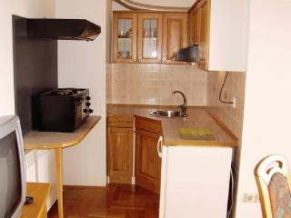 Apartments and Rooms Žaklina - 61651-A1 - Medveja vacation rentals