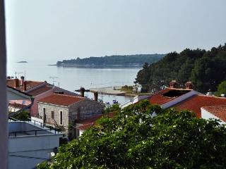 Apartments Ester - 73321-A2 - Porec-Kufci vacation rentals